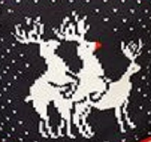 The most famous reindeer of all